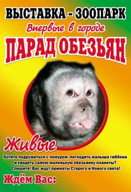 «Парад обезьян»