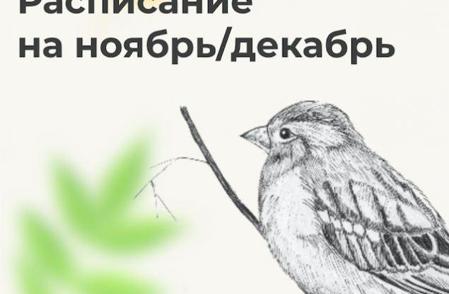 Расписание «Маминой школы» на ноябрь и декабрь