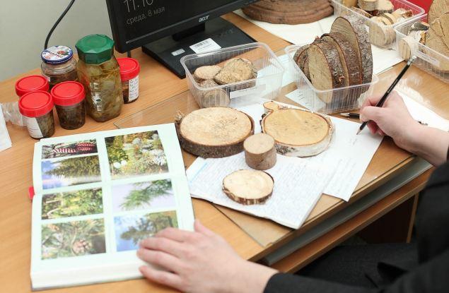 Вятский государственный университет приглашает ученых и специалистов-экологов повысить квалификацию в области биомониторинга