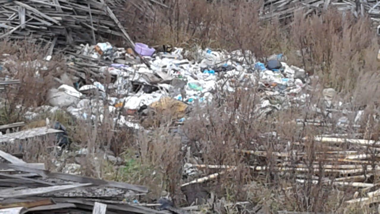 Жители Малмыжского района продолжают вывозить мусор на закрытую свалку