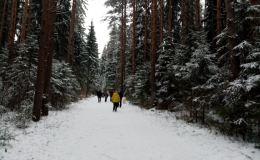В Кирове первая неделя декабря обещает быть тёплой и снежной