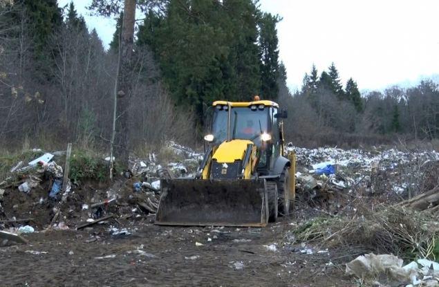 Прокуратура области зафиксировала 1106 нарушений мусорной реформы