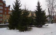 Оттепель продержится в Кирове до среды