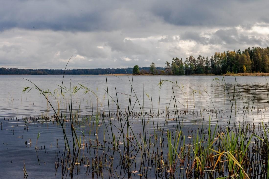 В Кировской области создан памятник природы «Комплекс пойменных озёр Холуново, Кривель, Чёрное»