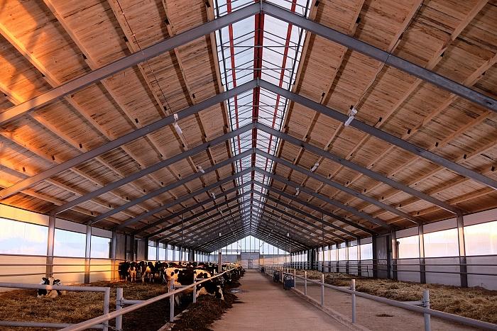 В 2020 году в области появятся пять новых молочных ферм
