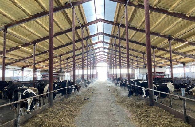 В Кировской области началось строительство нового животноводческого комплекса