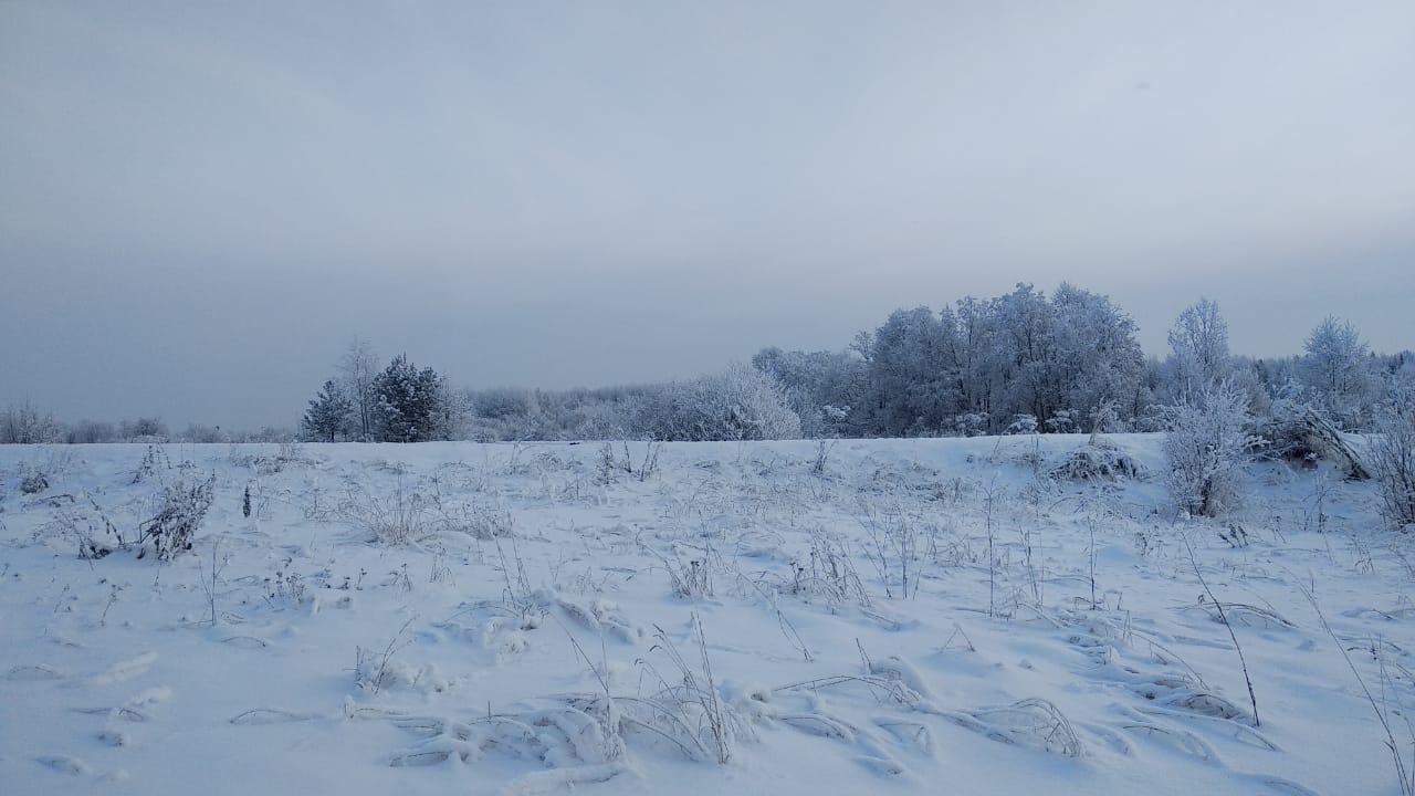 Рабочая неделя в Кирове будет теплой и снежной