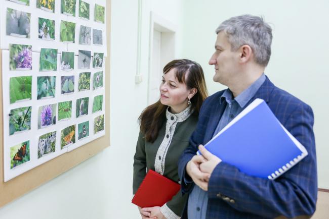 Ученые ВятГУ составили перечень насекомых Кировской области