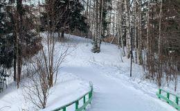 На 23 февраля в Кирове выпадет снег