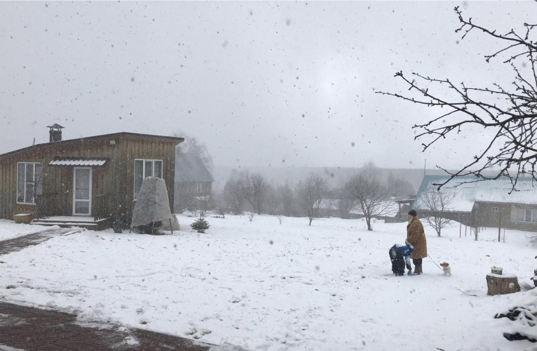 И все-таки снег. В выходные в Кирове продолжатся зимние осадки