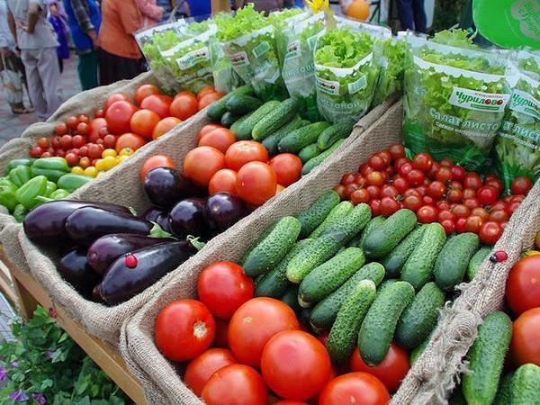 В Кирове нуждающимся будут поставляться свежие овощи