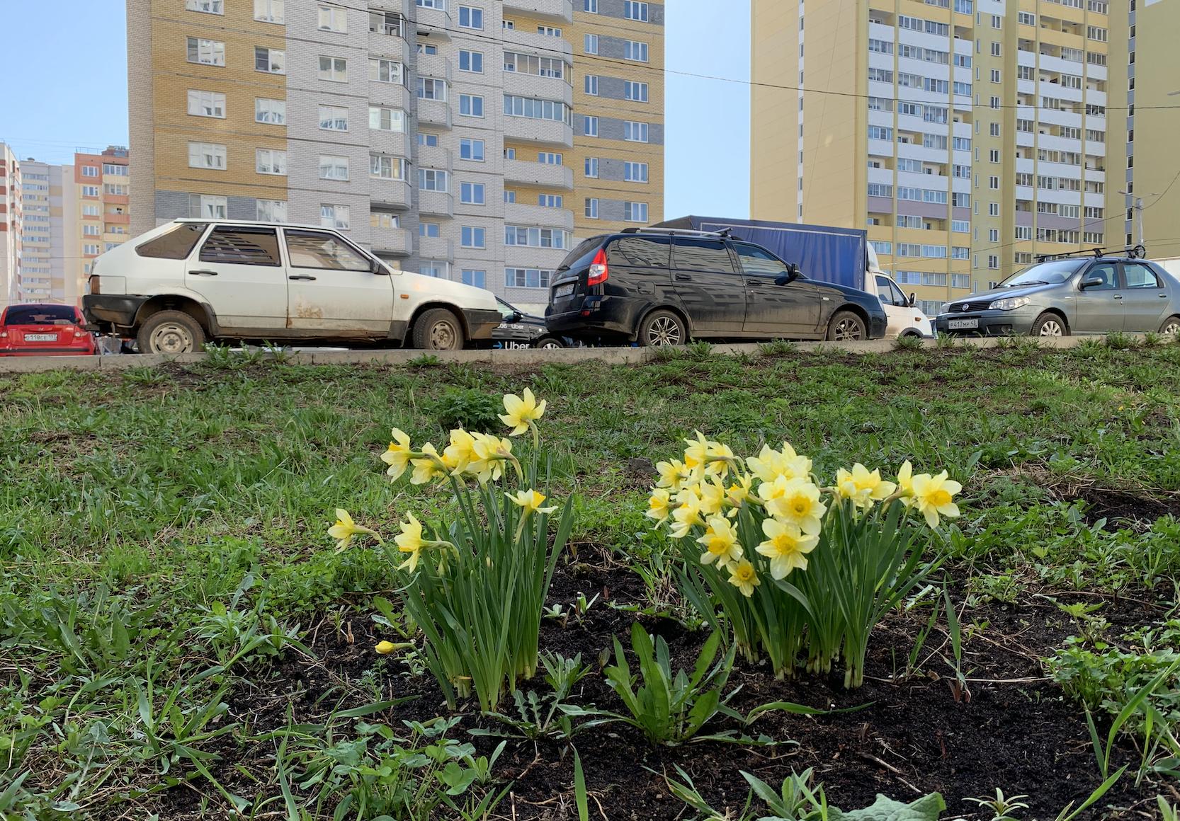 В Кирове будет дождливо и прохладно