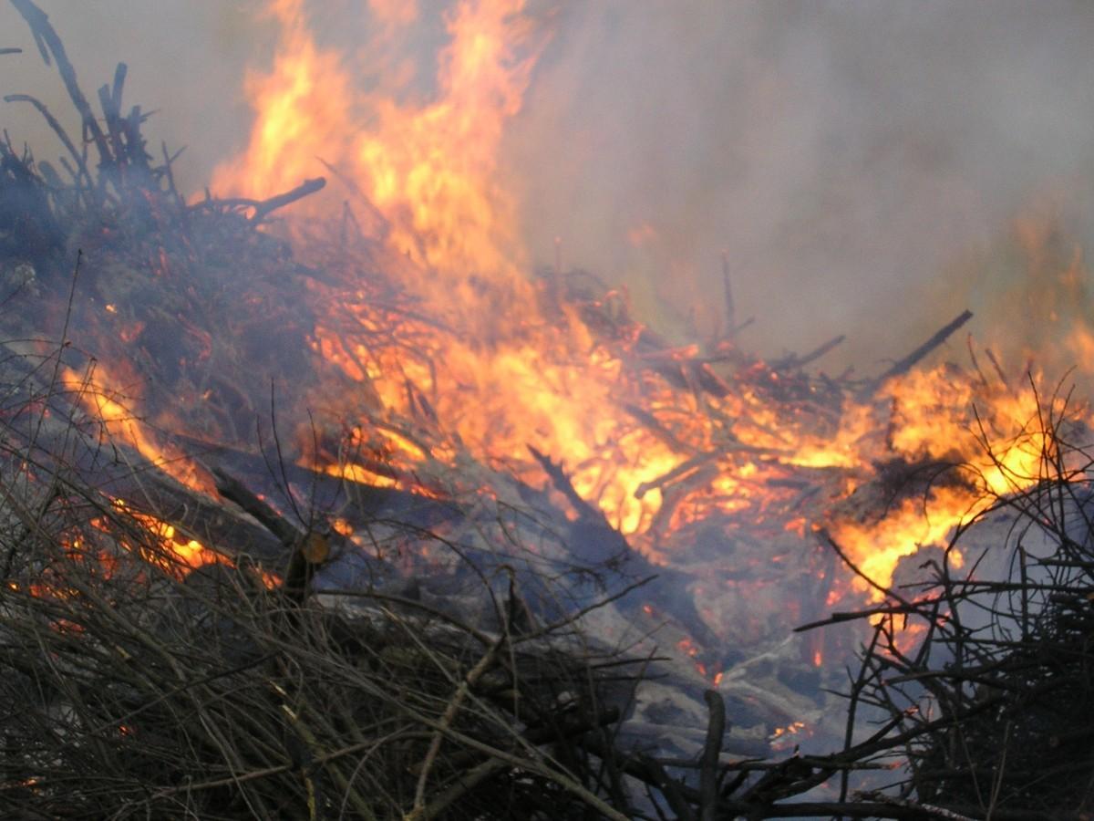 В Даровском раскрыли пожар, в котором погибли люди