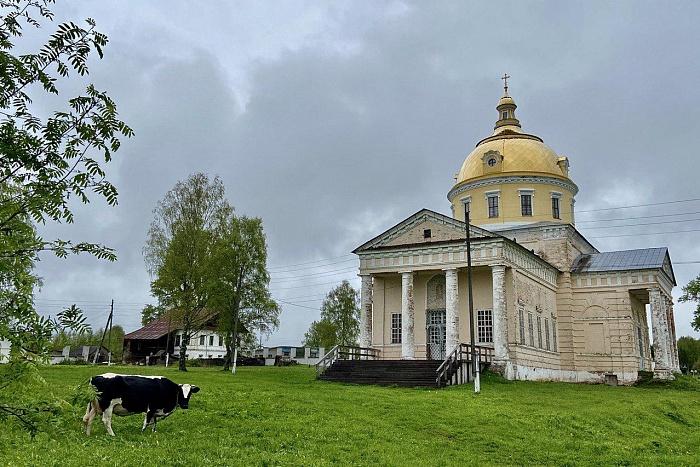 Жители Великорецкого подписали петицию об отмене крестного хода