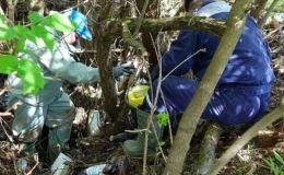 Несколько ведомств ищут владельцев пробирок, оказавшихся в реке Вятке