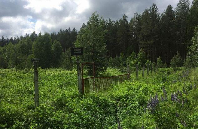 В Кировской области планируют ликвидировать крупнейший могильник химикатов