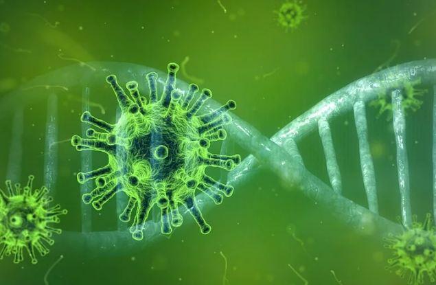 Жертвой коронавируса стала еще одна кировчанка