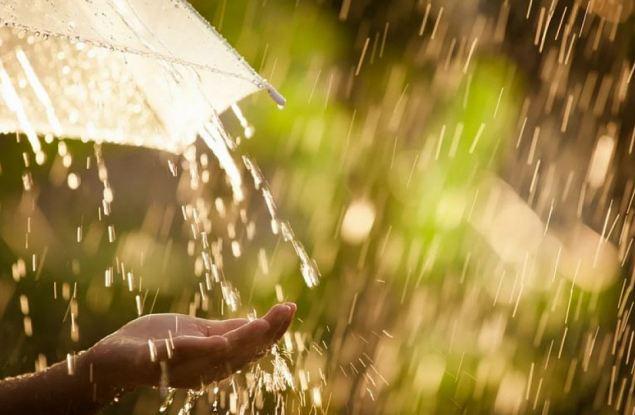 Синоптики обещают кировчанам дождливые выходные с грозой