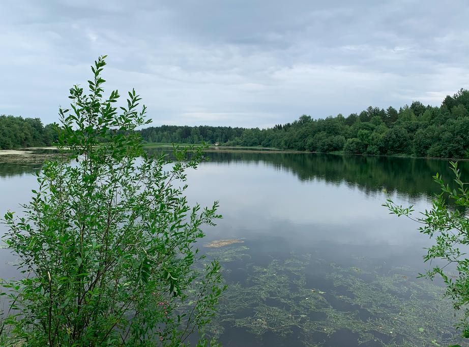 К концу рабочей недели дожди в Кирове усилятся