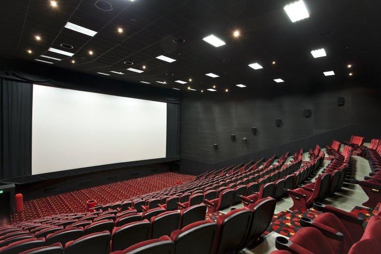 Руководители шести кинотеатров обратились к губернатору Васильеву