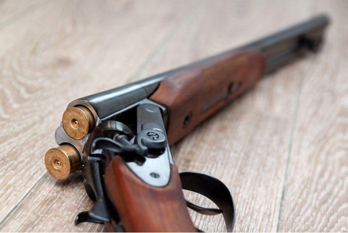 Расстрелявший семью пенсионер из Богородского отправлен в психушку