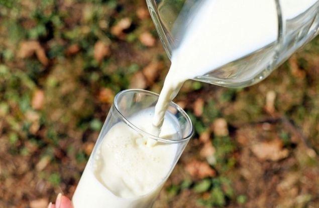 В Кирове выявили лучших производителей молочной продукции