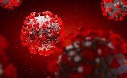 Число коронавирусных пациентов в кировских инфекционных госпиталях вплотную приблизилось к 1500 человек