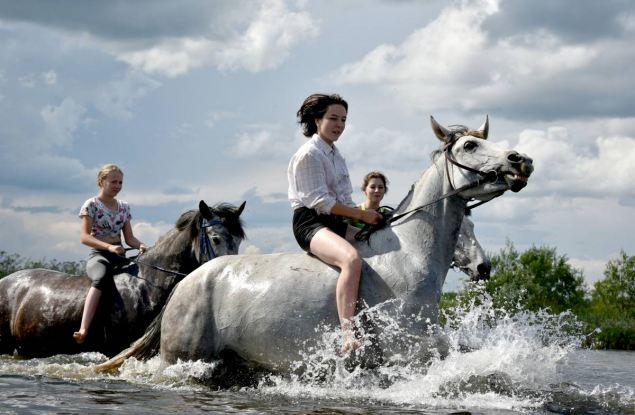 Жители Орловского и Котельничского района стали победителями регионального этапа Всероссийского фотоконкурса «Моё село»