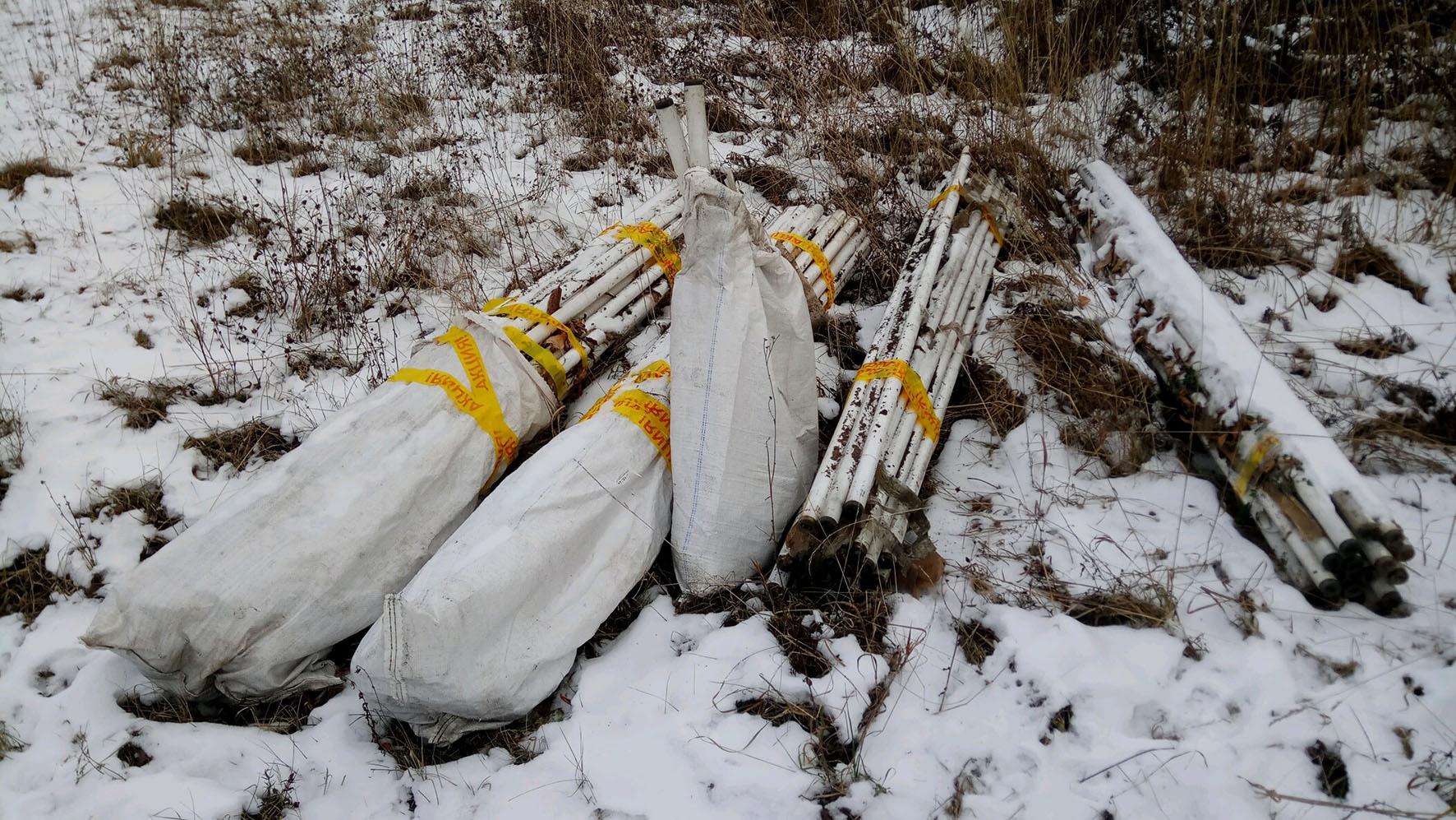 В Кирове найдена очередная несанкционированная свалка