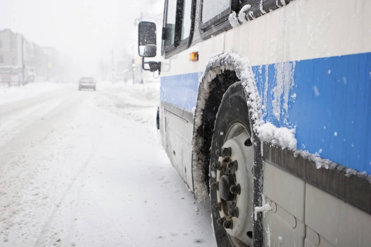 В «Единой России» высказались в поддержку запрета высаживать детей из общественного транспорта
