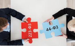 Участие в государственных закупках по 44-ФЗ и 223-ФЗ