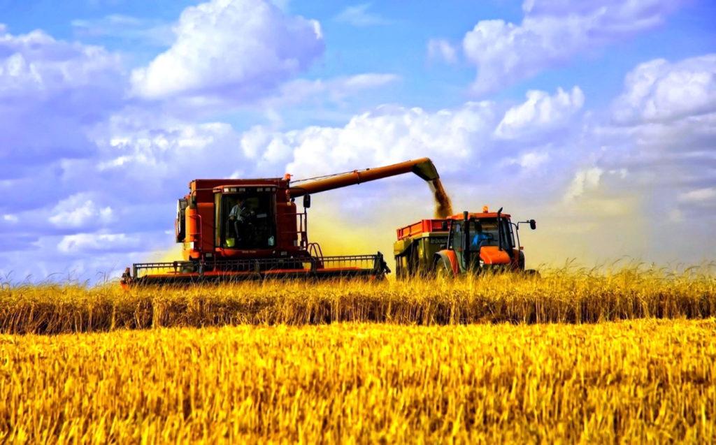 В 2020 году Россельхозбанк увеличил поддержку фермеров в 1,5 раза