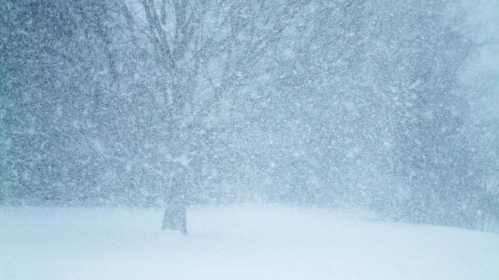 На выходных в Кирове ожидаются резкое потепление и сильный снегопад