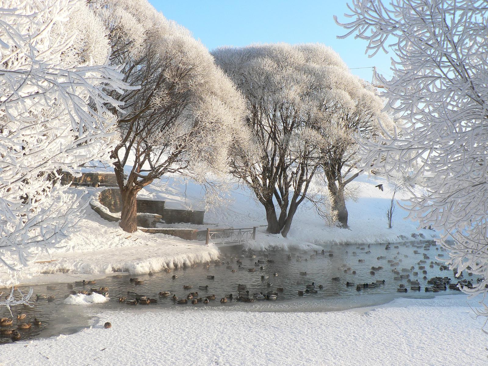 В конце этой недели в Киров придет новая волна похолодания