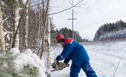 В 2020 году энергетики Кировэнерго выполнили расчистку и расширение более 3 тысяч гектаров трасс под воздушными линиями электропередачи