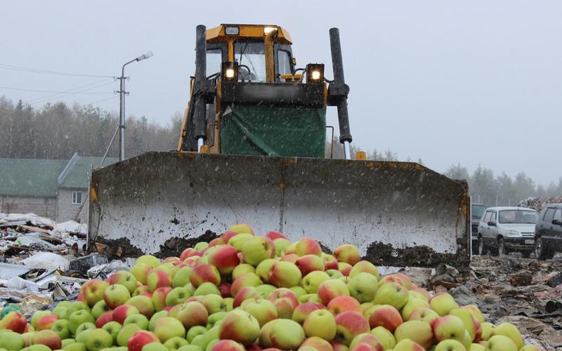 1,5 тонны нелегальных яблок были уничтожены в Кировской области