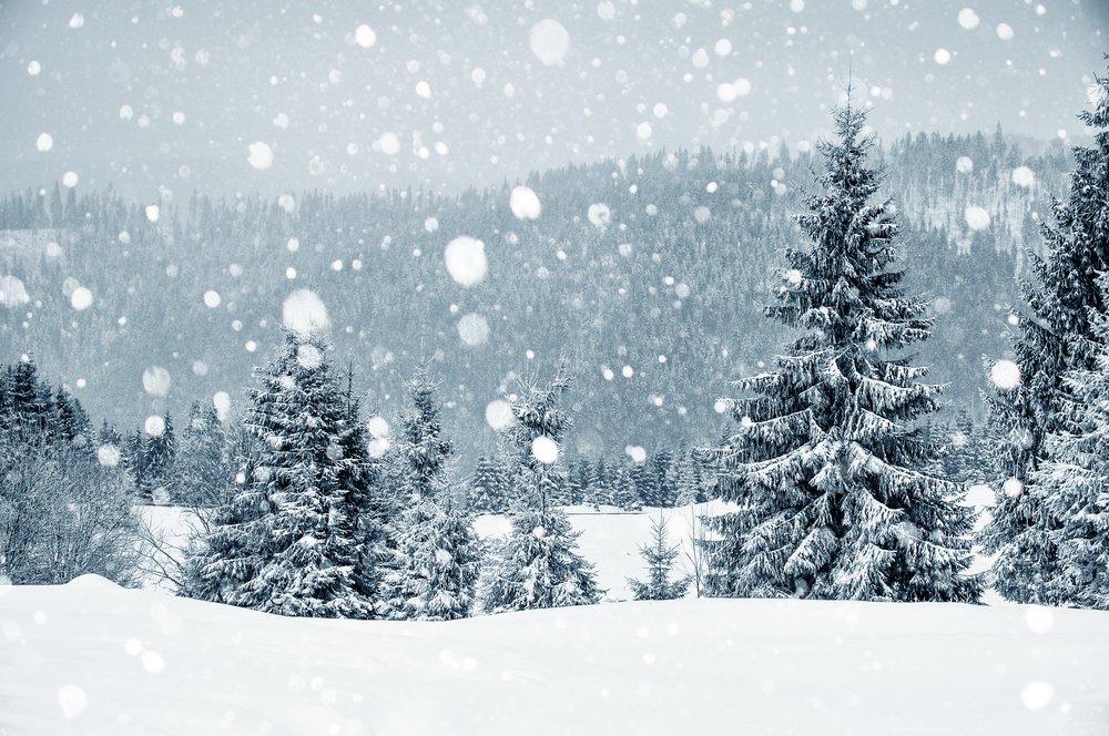 На выходных в Кирове ожидается переменная погода