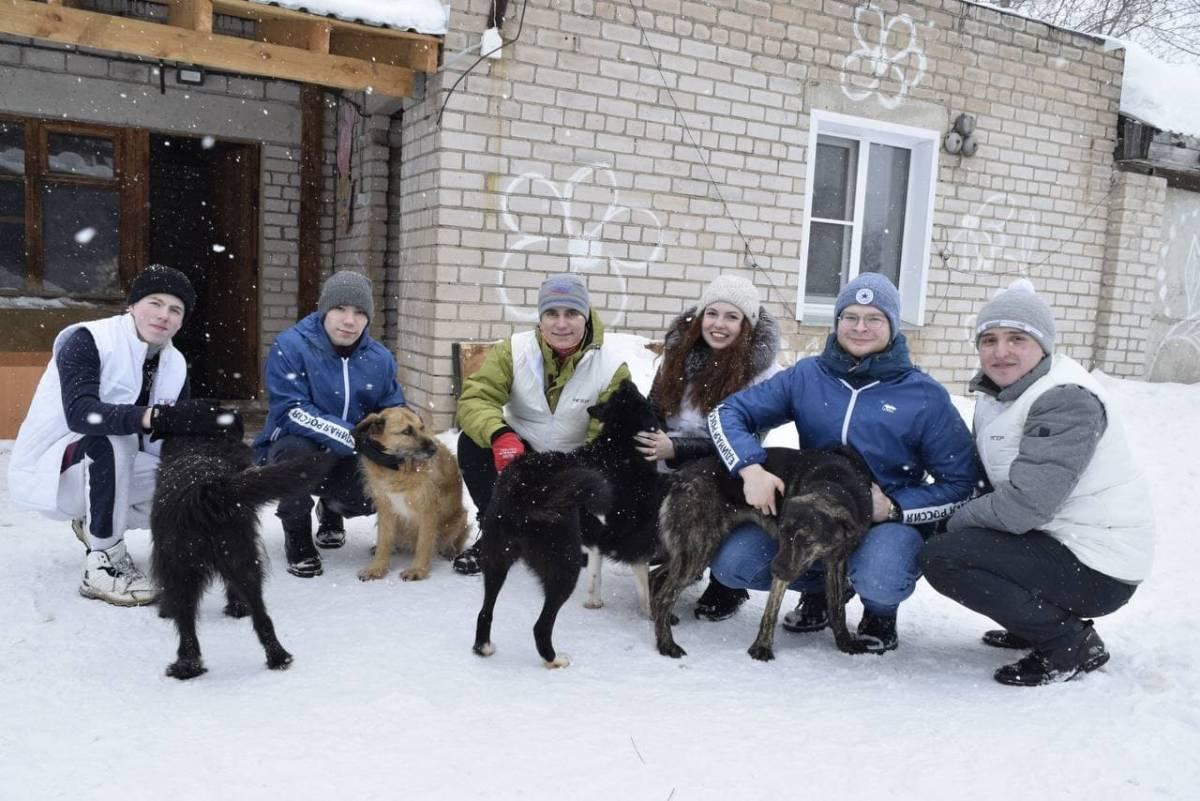 Волонтеры помогли с уборкой снега приюту для бездомных животных