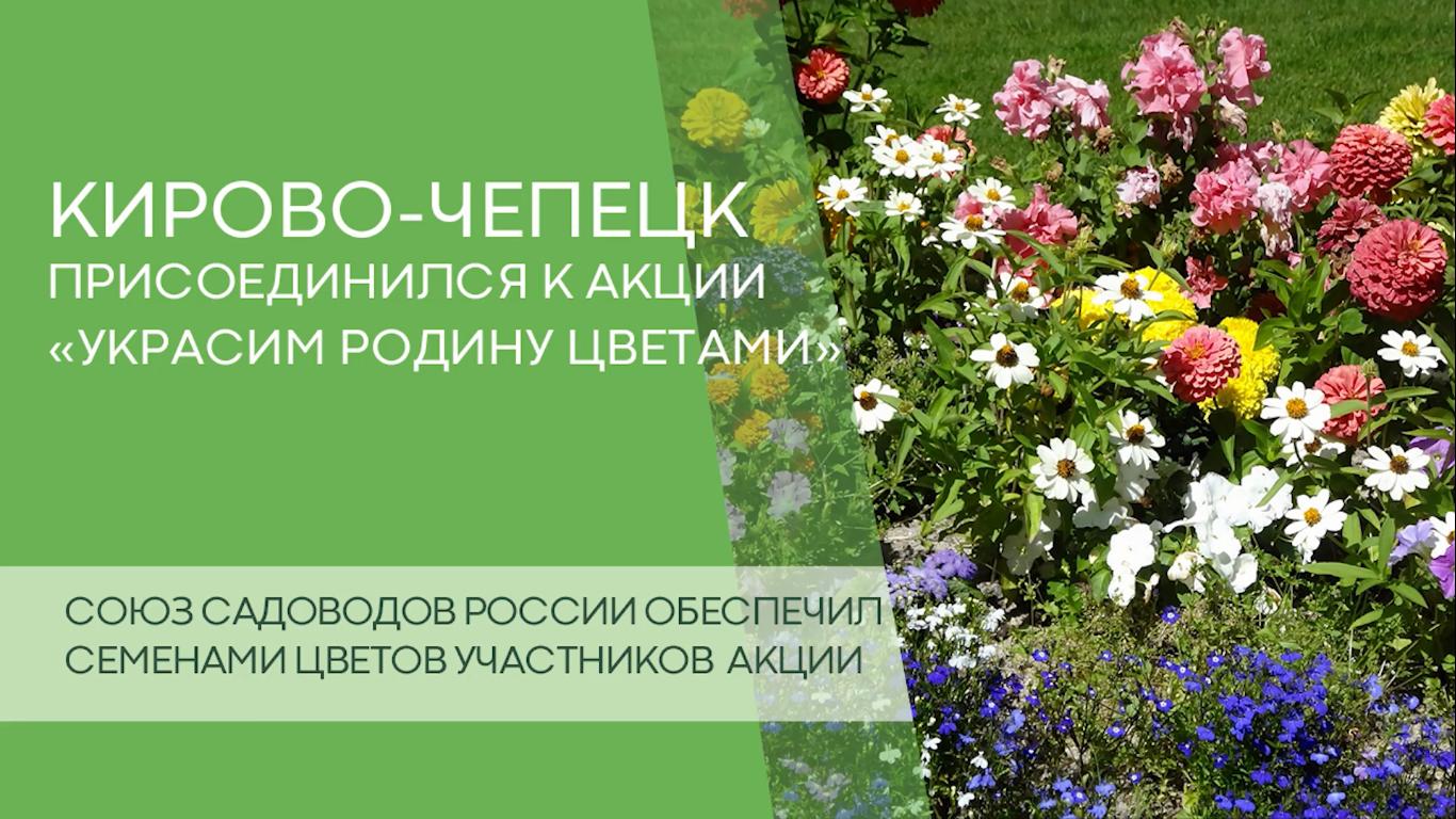 Кирово-Чепецк присоединился к акции «Украсим Родину цветами»