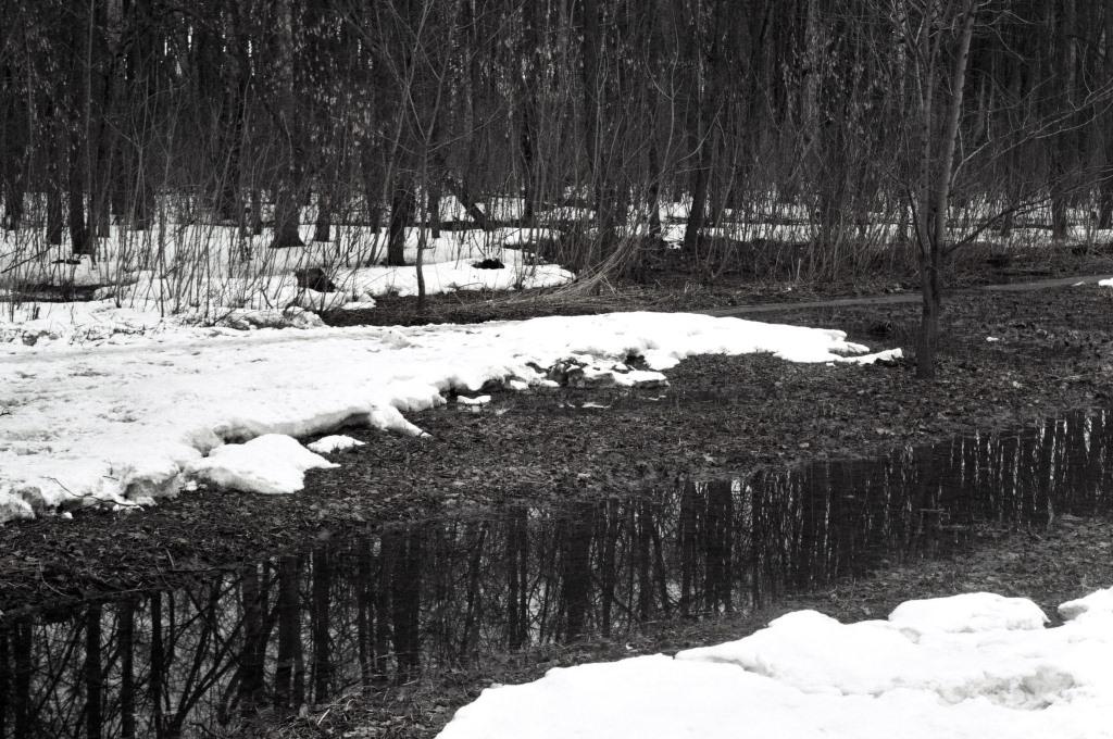 На этой рабочей неделе в Кирове потеплеет до +20 градусов
