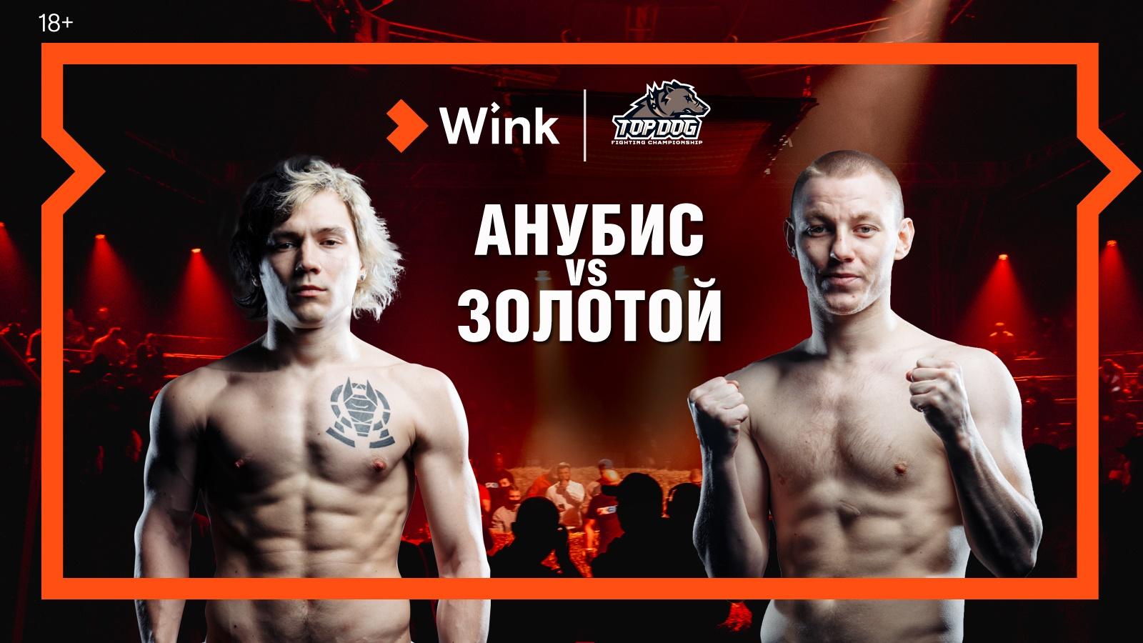 16 апреля в Wink впервые в прямом эфире кулачные бои TOP DOG