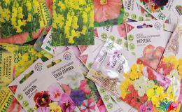 Центр «Вятушка» поддержал движение «Украсим Родину цветами!»