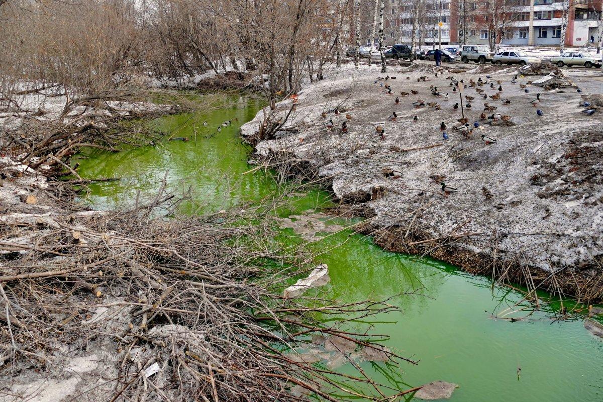 Т Плюс просит жителей Кирова сообщать о «зеленой» воде