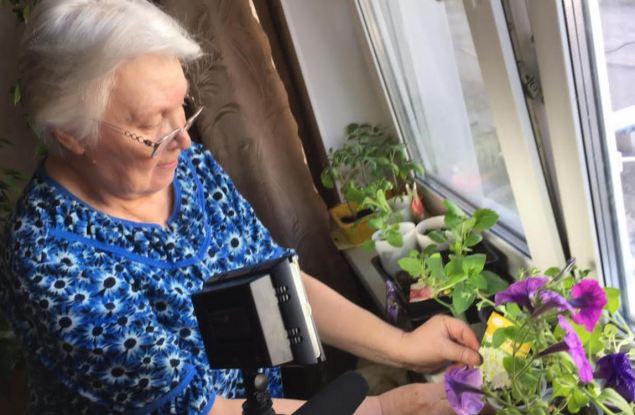 В Нововятском районе продолжается выдача семян от Союза садоводов России