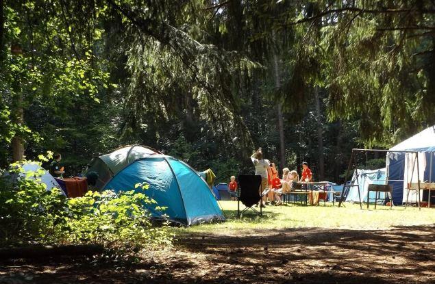 На базе школ в Кирове заработают лагеря