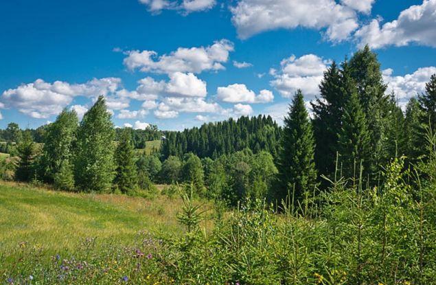 «Ошеть» стал памятником природы регионального значения