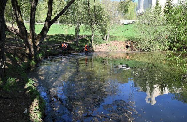 В парке имени Кирова пруд чистят регулярно?