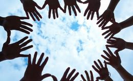 Молодежь в Кировской области интересует донорство, экология и спорт
