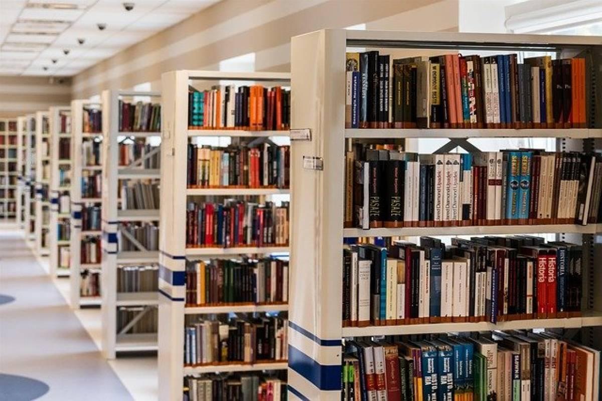 «Единая Россия» запустила акцию «Русская классика – библиотекам»