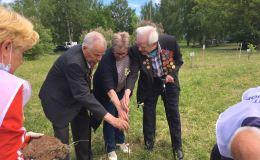 Ветераны и школьники высадили в Кирово-Чепецке Сад Памяти
